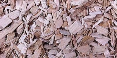 cippato di legno vergine