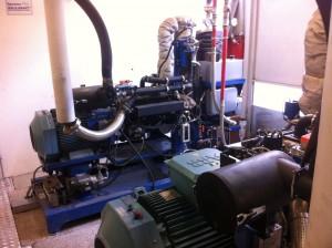 cogenerazione a biomassa SPANNER